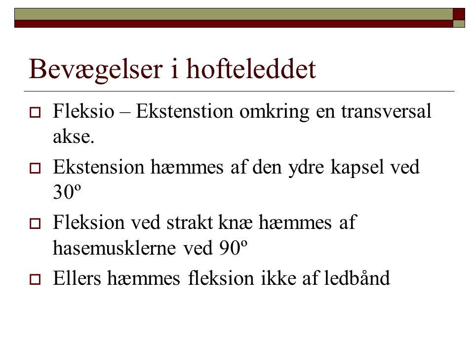 Bevægelser i hofteleddet  Fleksio – Ekstenstion omkring en transversal akse.