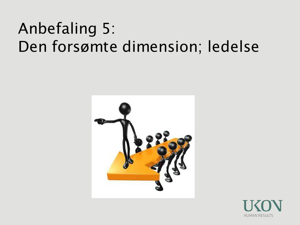 Anbefaling 5: Den forsømte dimension; ledelse