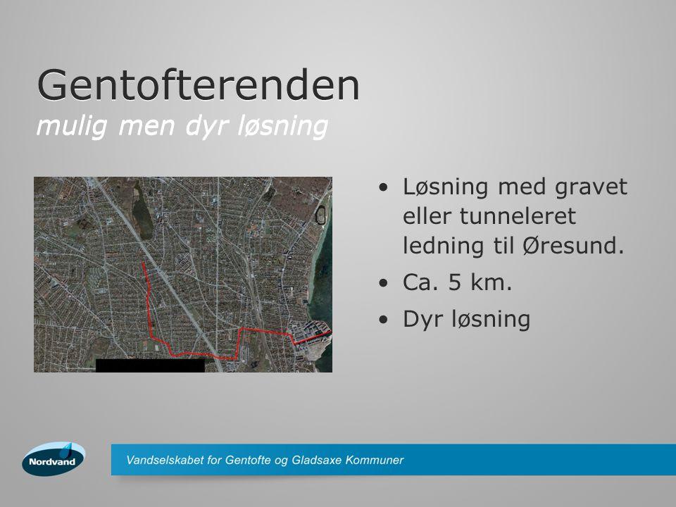 Gentofterenden mulig men dyr løsning Løsning med gravet eller tunneleret ledning til Øresund.