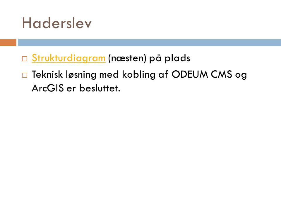 Haderslev  Strukturdiagram (næsten) på plads Strukturdiagram  Teknisk løsning med kobling af ODEUM CMS og ArcGIS er besluttet.