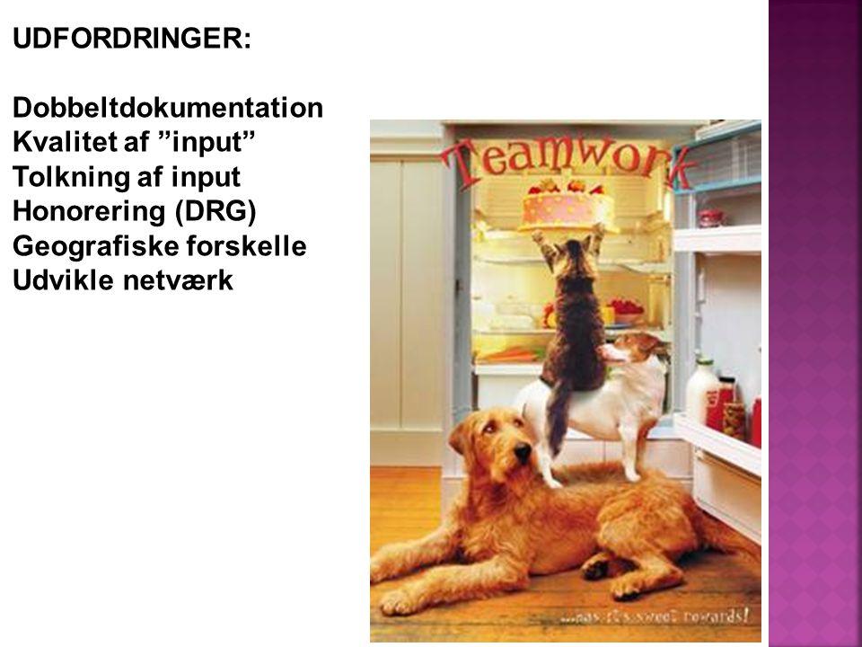 UDFORDRINGER: Dobbeltdokumentation Kvalitet af input Tolkning af input Honorering (DRG) Geografiske forskelle Udvikle netværk