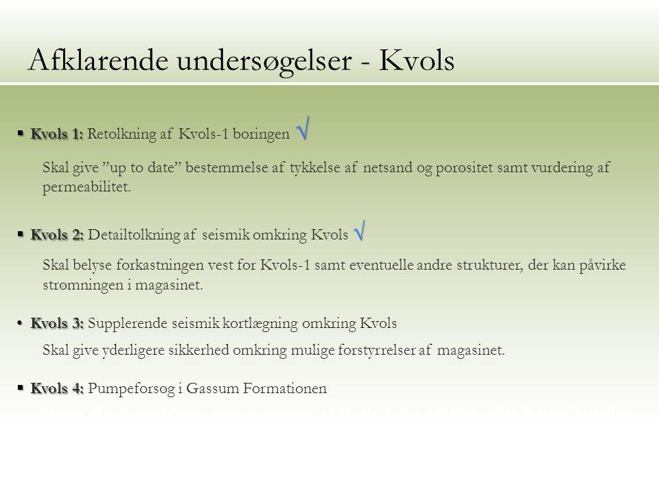 12 Afklarende undersøgelser - Kvols  Kvols 1: √  Kvols 1: Retolkning af Kvols-1 boringen √ Skal give up to date bestemmelse af tykkelse af netsand og porøsitet samt vurdering af permeabilitet.