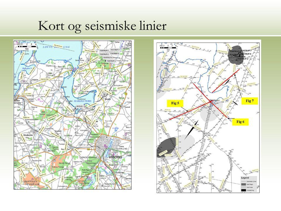 Kort og seismiske linier