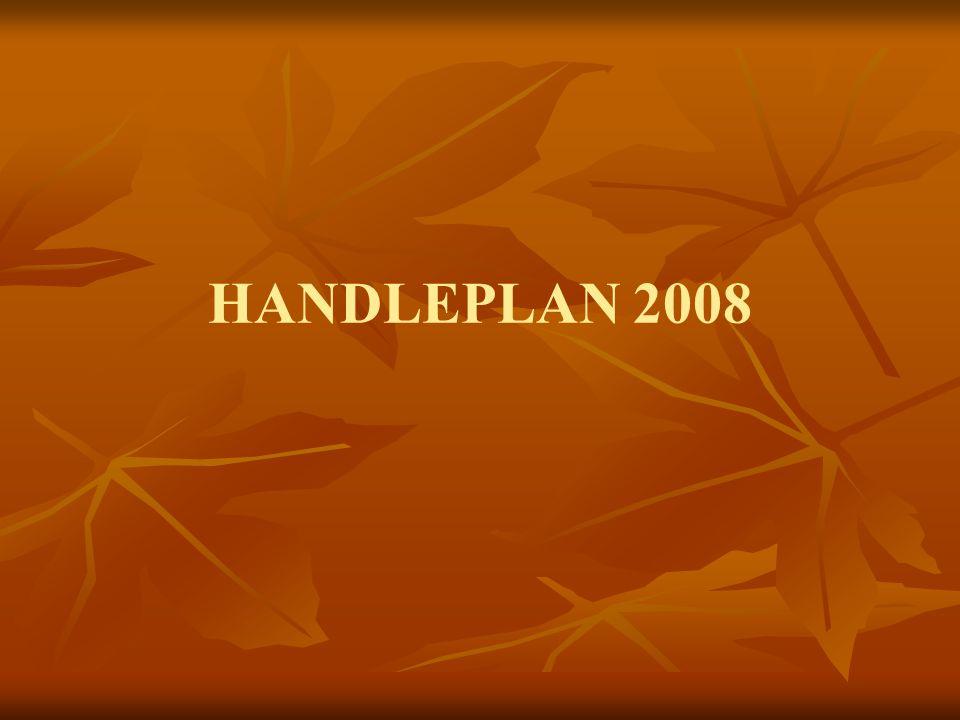 HANDLEPLAN 2008