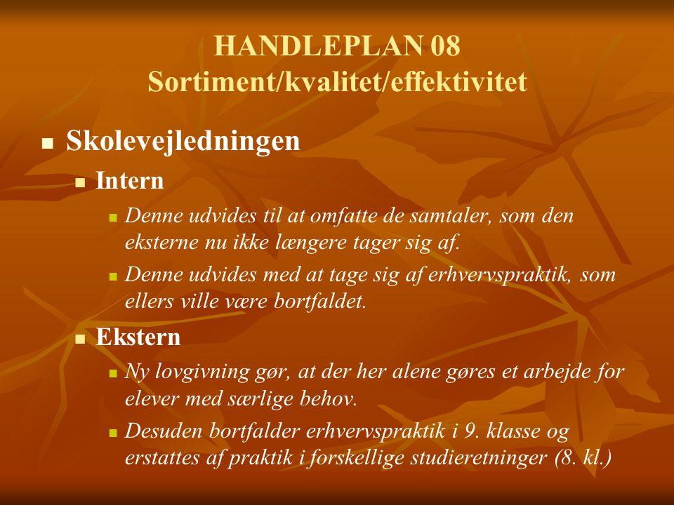 HANDLEPLAN 08 Sortiment/kvalitet/effektivitet Skolevejledningen Intern Denne udvides til at omfatte de samtaler, som den eksterne nu ikke længere tager sig af.