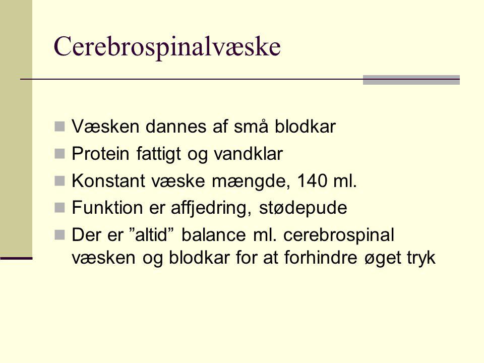 Cerebrospinalvæske Væsken dannes af små blodkar Protein fattigt og vandklar Konstant væske mængde, 140 ml.