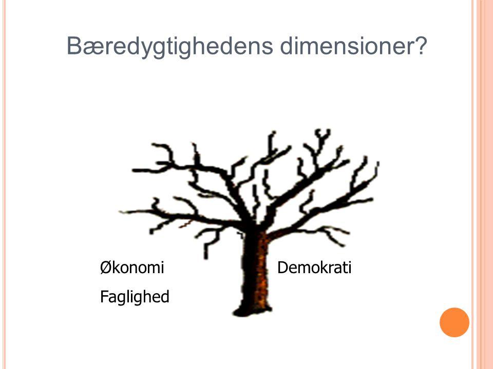 Økonomi Demokrati Faglighed Bæredygtighedens dimensioner