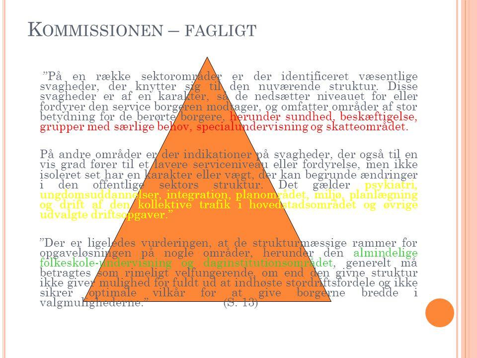 K OMMISSIONEN – FAGLIGT På en række sektorområder er der identificeret væsentlige svagheder, der knytter sig til den nuværende struktur.