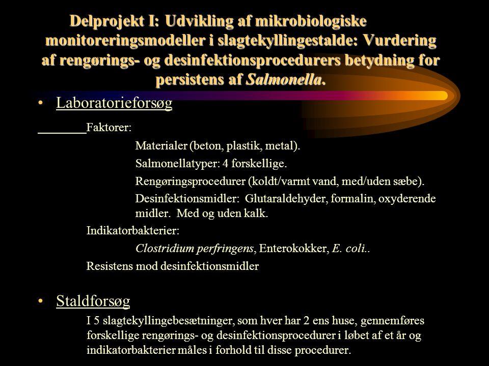 Rengørings- og desinfektionsprojekter under Salmonellahandlingsplanen Delprojekt I: Udvikling af mikrobiologiske monitoreringsmodeller i slagtekyllingestalde: Vurdering af rengørings- og desinfektionsprocedurers betydning for persistens af Salmonella.