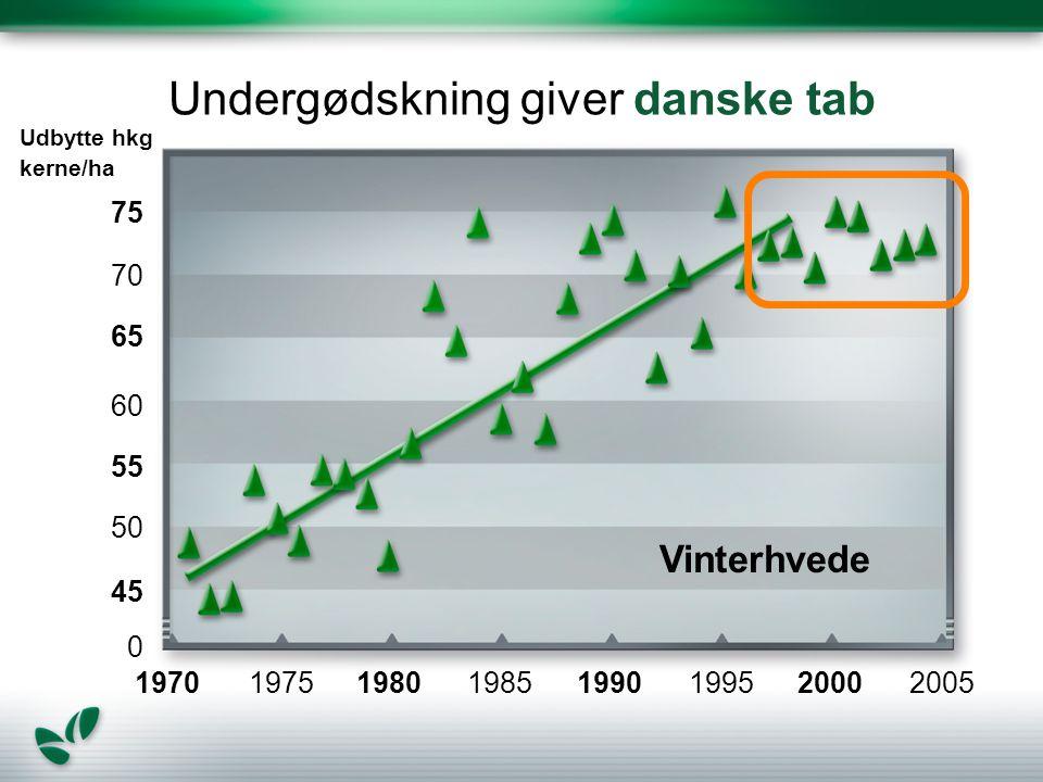 Undergødskning giver danske tab Vinterhvede 1970 Udbytte hkg kerne/ha 75 70 65 60 55 0 50 45 1975198019851990199520002005