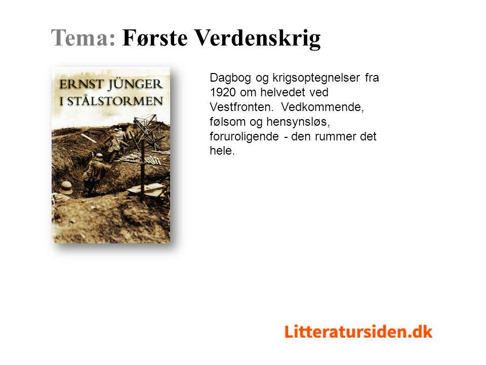Dagbog og krigsoptegnelser fra 1920 om helvedet ved Vestfronten.