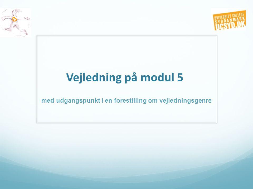 Vejledning på modul 5 med udgangspunkt i en forestilling om vejledningsgenre