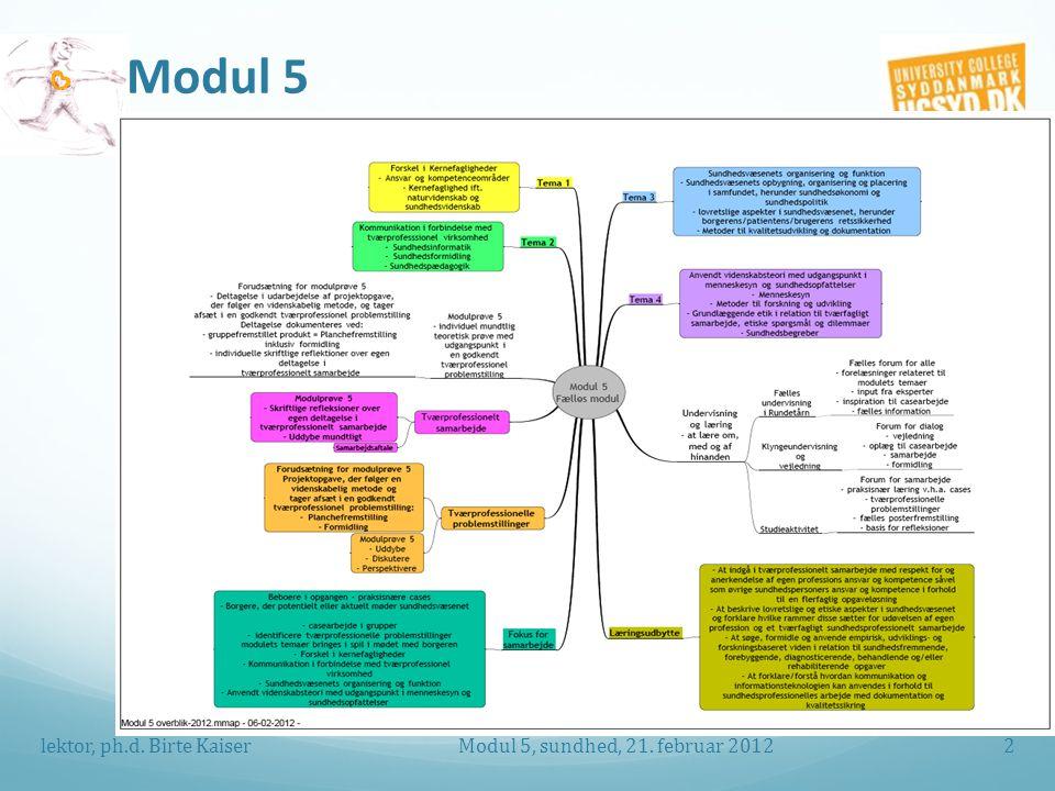 Modul 5 Modul 5, sundhed, 21. februar 2012 lektor, ph.d. Birte Kaiser2
