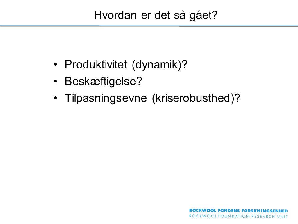 Produktivitet (dynamik) Beskæftigelse Tilpasningsevne (kriserobusthed) Hvordan er det så gået