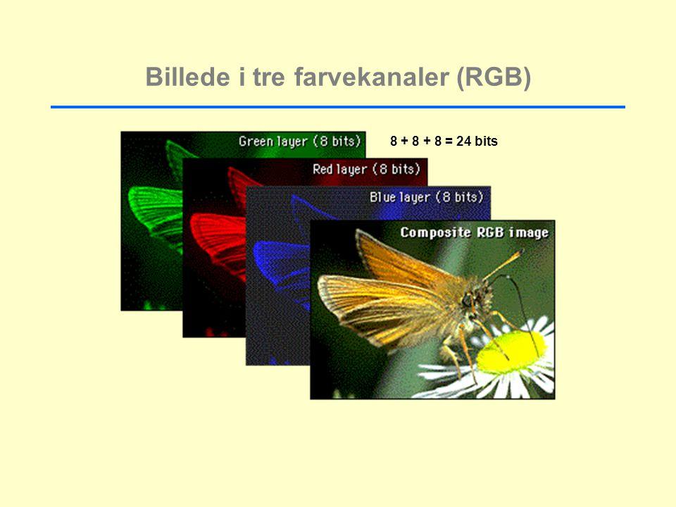 Billede i tre farvekanaler (RGB) 8 + 8 + 8 = 24 bits