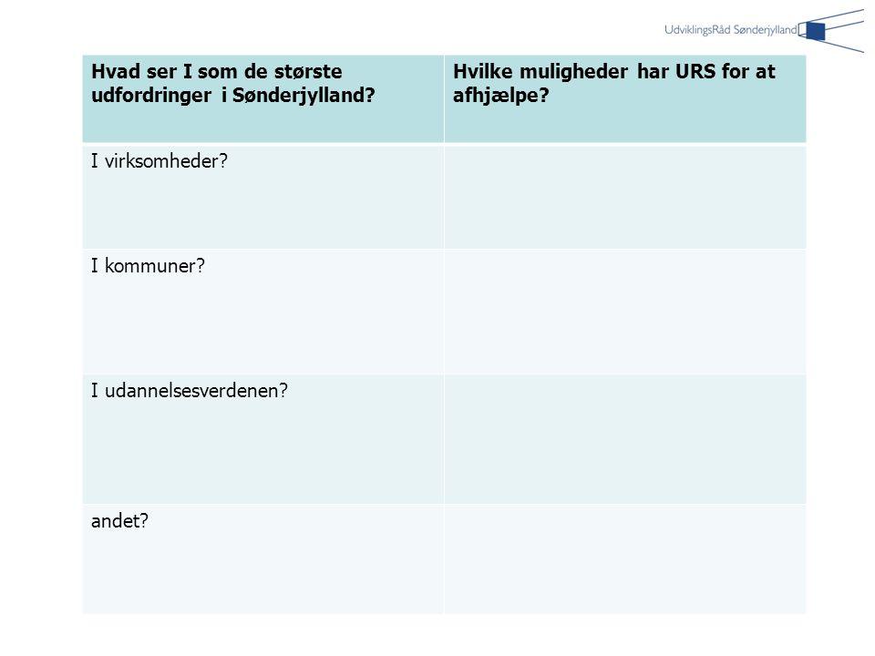 Hvad ser I som de største udfordringer i Sønderjylland.