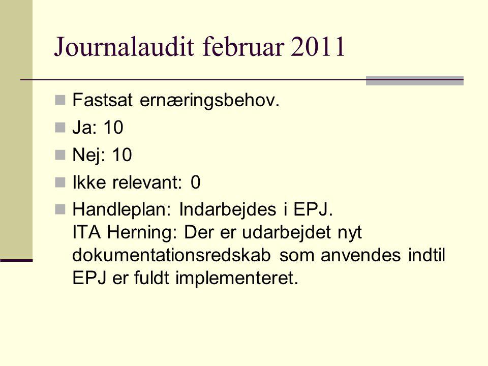 Journalaudit februar 2011 Fastsat ernæringsbehov.