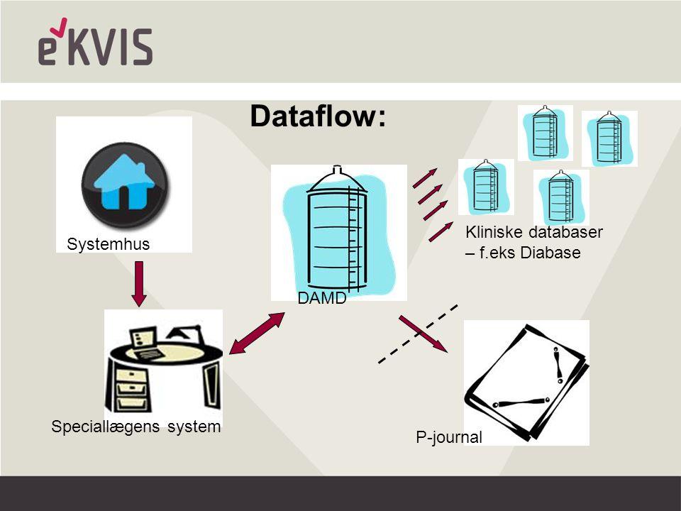 Systemhus Speciallægens system DAMD P-journal Kliniske databaser – f.eks Diabase Dataflow: