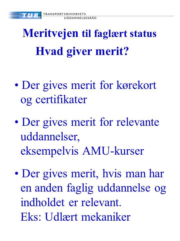 Meritvejen til faglært status Hvad giver merit.