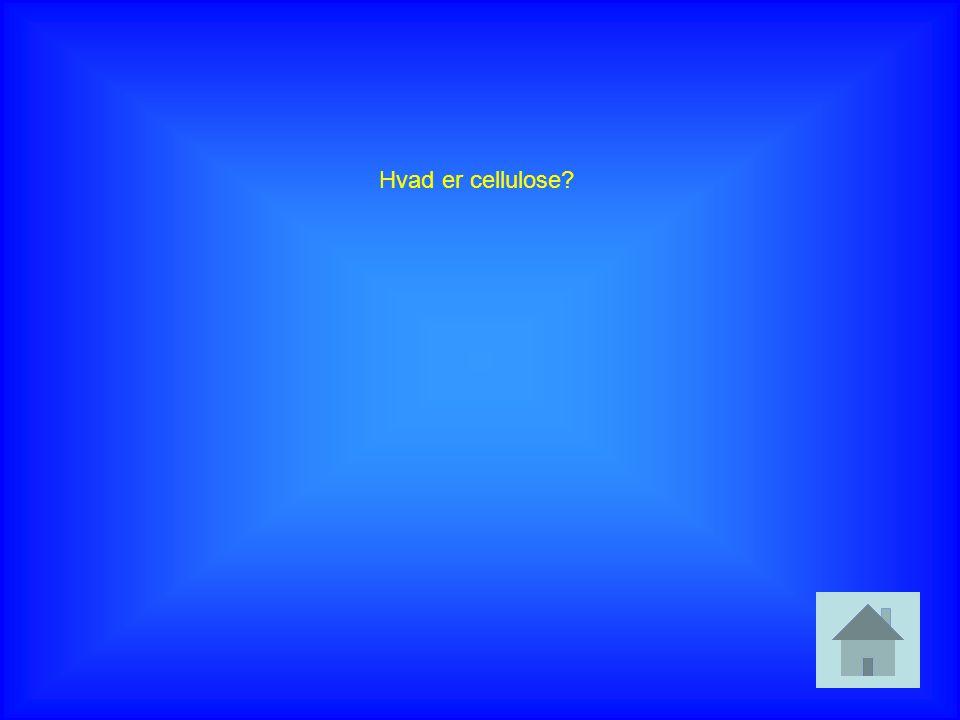 Hvad er cellulose