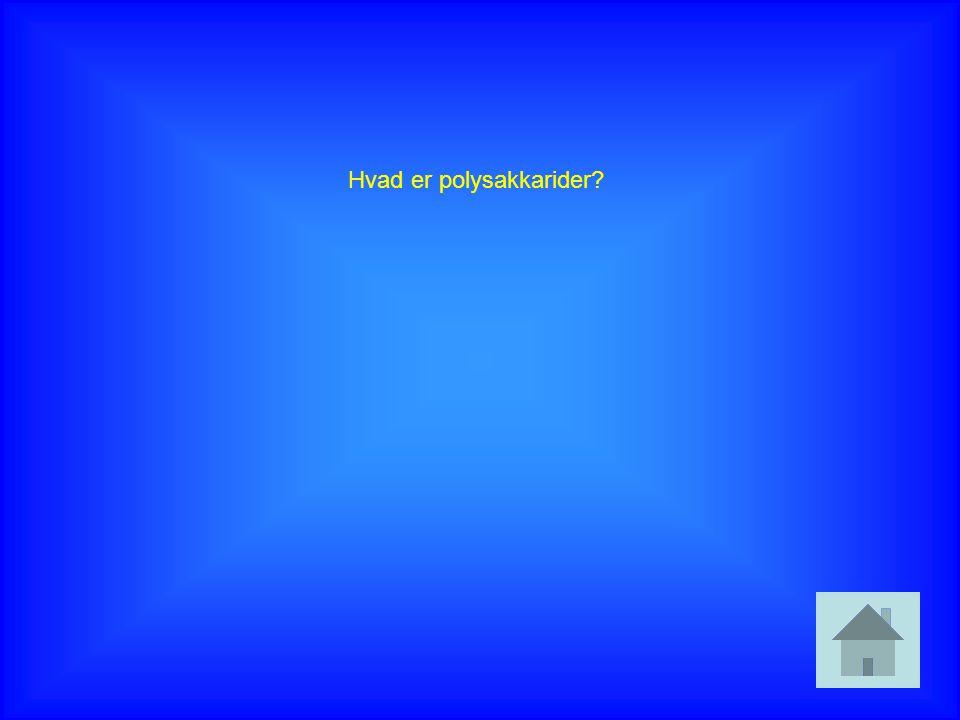 Hvad er polysakkarider