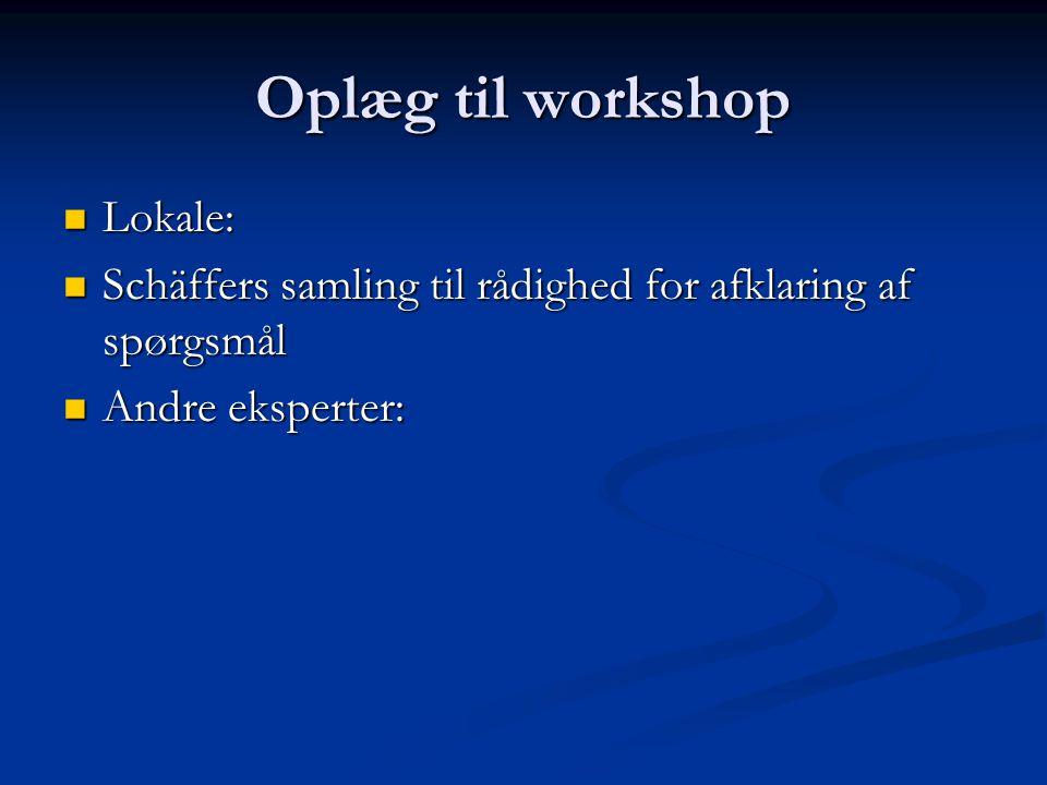 Oplæg til workshop Lokale: Lokale: Schäffers samling til rådighed for afklaring af spørgsmål Schäffers samling til rådighed for afklaring af spørgsmål Andre eksperter: Andre eksperter: