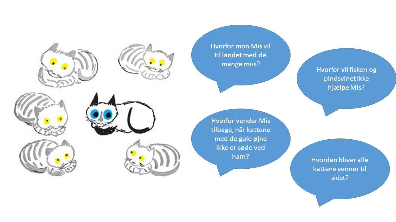 Hvorfor mon Mis vil til landet med de mange mus. Hvorfor vil fisken og pindsvinet ikke hjælpe Mis.