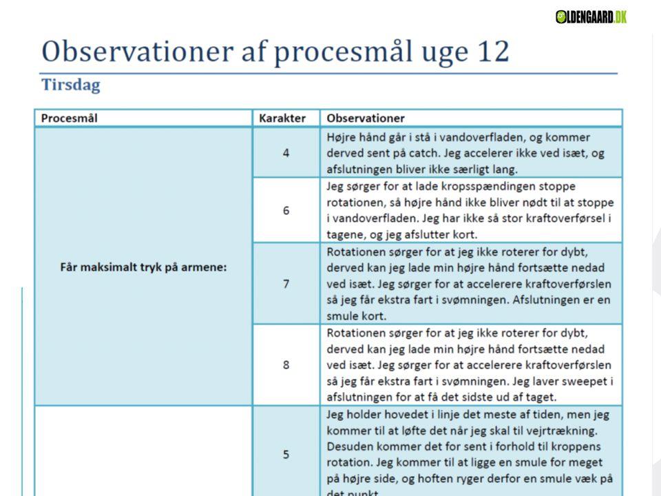 Eksempler på svømmerens procesmålsarbejde… 3