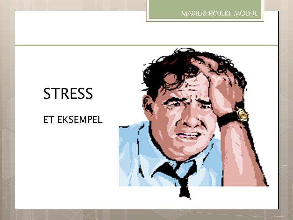 MASTERPROJEKT MODUL STRESS ET EKSEMPEL