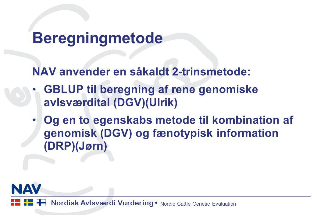 Nordisk Avlsværdi Vurdering Nordic Cattle Genetic Evaluation Beregningmetode NAV anvender en såkaldt 2-trinsmetode: GBLUP til beregning af rene genomiske avlsværdital (DGV)(Ulrik) Og en to egenskabs metode til kombination af genomisk (DGV) og fænotypisk information (DRP)(Jørn)