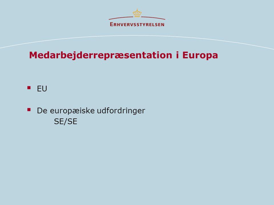 Medarbejderrepræsentation i Europa  EU  De europæiske udfordringer SE/SE