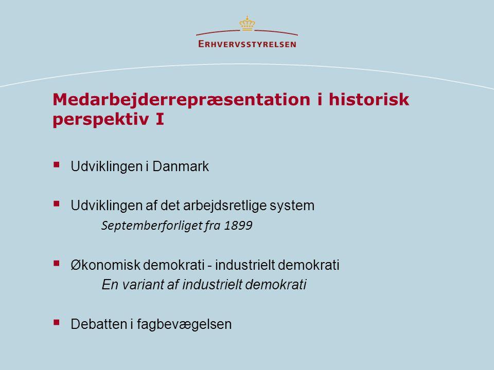 Medarbejderrepræsentation i historisk perspektiv I  Udviklingen i Danmark  Udviklingen af det arbejdsretlige system Septemberforliget fra 1899  Økonomisk demokrati - industrielt demokrati En variant af industrielt demokrati  Debatten i fagbevægelsen