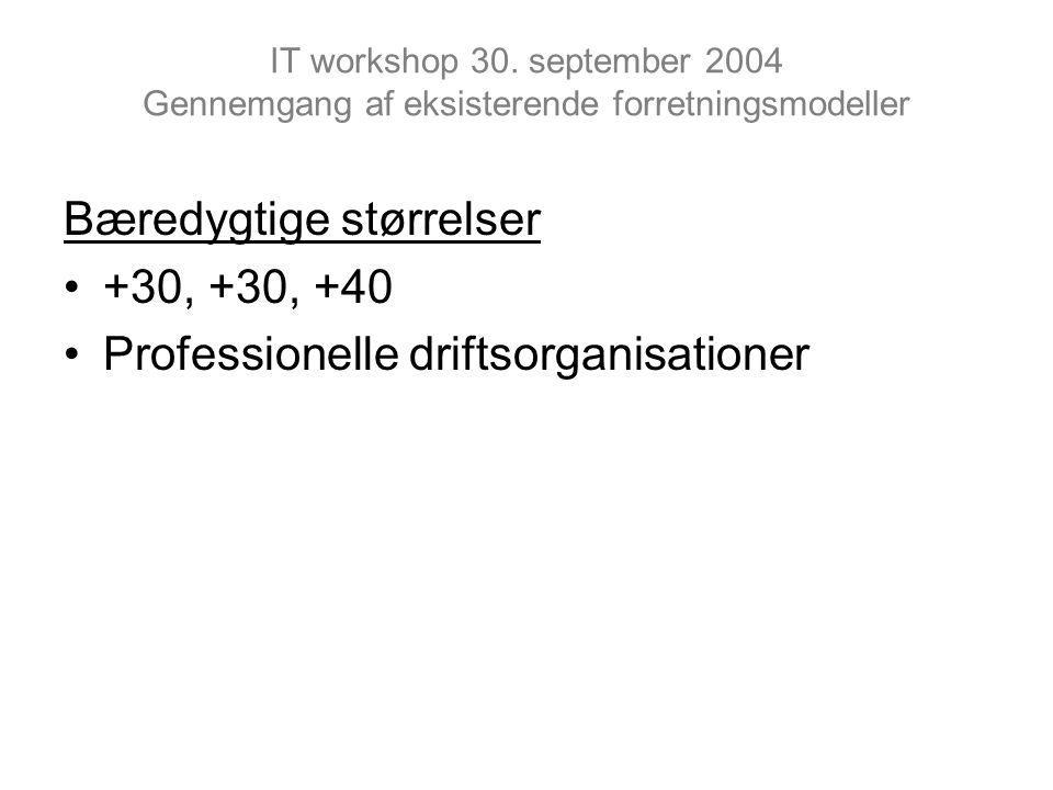 IT workshop 30.