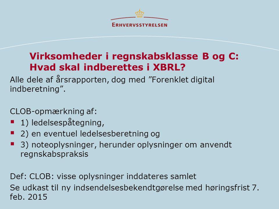 Virksomheder i regnskabsklasse B og C: Hvad skal indberettes i XBRL.