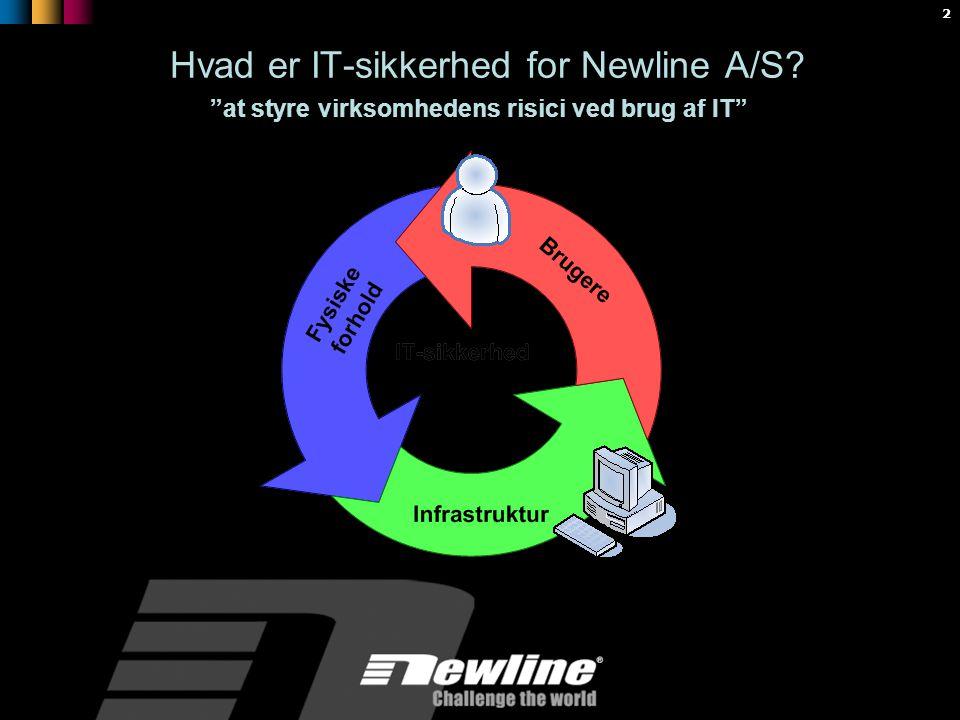 2 Hvad er IT-sikkerhed for Newline A/S at styre virksomhedens risici ved brug af IT