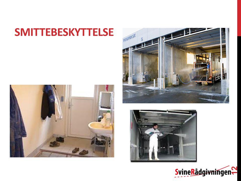 SMITTEBESKYTTELSE 12