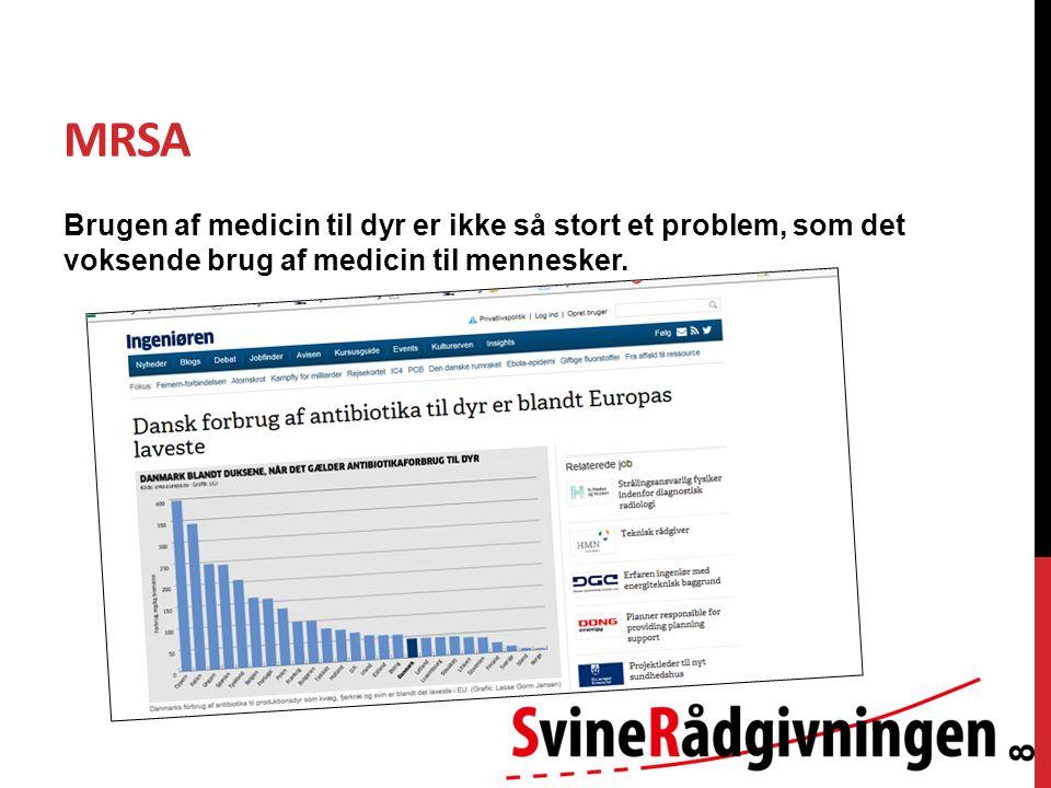 MRSA Brugen af medicin til dyr er ikke så stort et problem, som det voksende brug af medicin til mennesker.