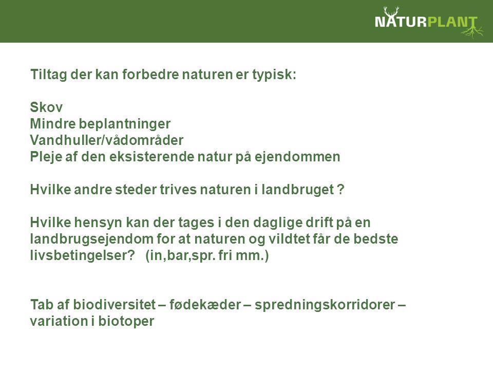Tiltag der kan forbedre naturen er typisk: Skov Mindre beplantninger Vandhuller/vådområder Pleje af den eksisterende natur på ejendommen Hvilke andre steder trives naturen i landbruget .