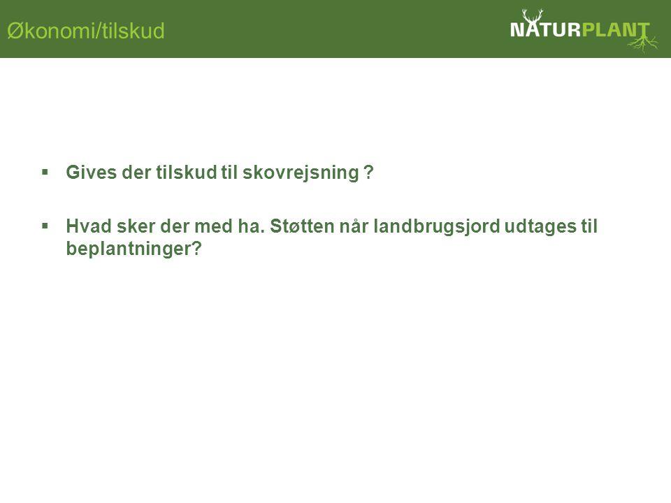 Økonomi/tilskud  Gives der tilskud til skovrejsning .