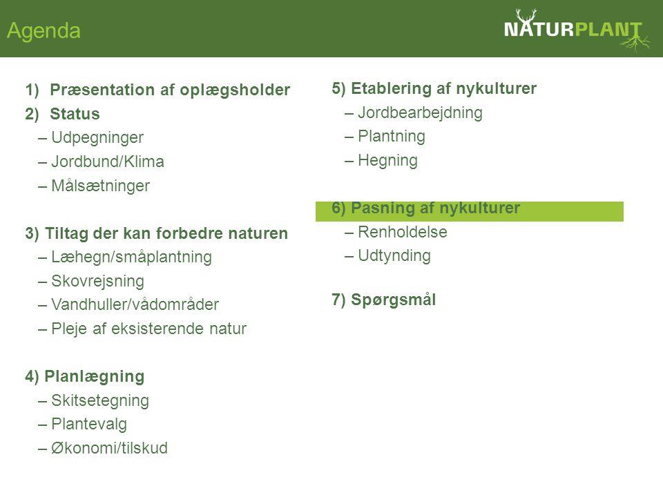 1)Præsentation af oplægsholder 2)Status –Udpegninger –Jordbund/Klima –Målsætninger 3) Tiltag der kan forbedre naturen –Læhegn/småplantning –Skovrejsning –Vandhuller/vådområder –Pleje af eksisterende natur 4) Planlægning –Skitsetegning –Plantevalg –Økonomi/tilskud Agenda 5) Etablering af nykulturer –Jordbearbejdning –Plantning –Hegning 6) Pasning af nykulturer –Renholdelse –Udtynding 7) Spørgsmål