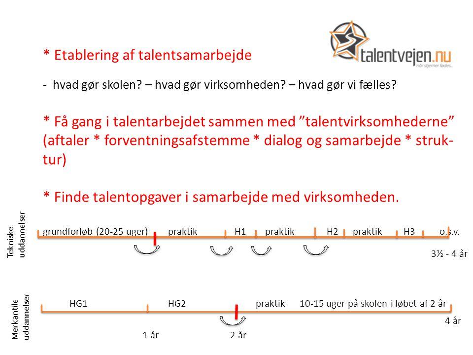 * Etablering af talentsamarbejde - hvad gør skolen.