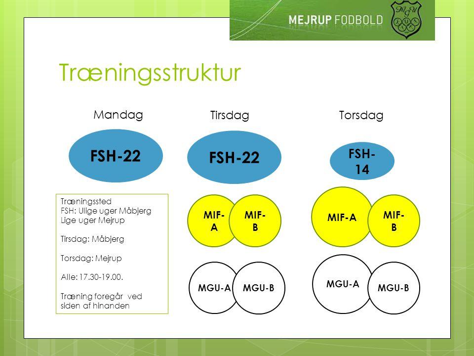Træningsstruktur Mandag Tirsdag Torsdag FSH-22 MIF- A MIF- B MGU-A MGU-B MIF-A MIF- B MGU-A MGU-B FSH-22 FSH- 14 Træningssted FSH: Ulige uger Måbjerg Lige uger Mejrup Tirsdag: Måbjerg Torsdag: Mejrup Alle: 17.30-19.00.