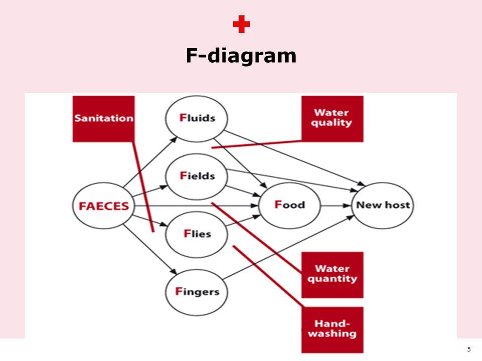 Animation på teksten F-diagram HVEM OG PÅ HVILKEN BAGGRUND TRÆFFER BESLUTNING OM VALG AF MODEL5