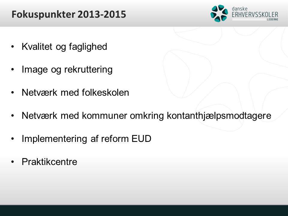 Fokuspunkter 2013-2015 Kvalitet og faglighed Image og rekruttering Netværk med folkeskolen Netværk med kommuner omkring kontanthjælpsmodtagere Implementering af reform EUD Praktikcentre