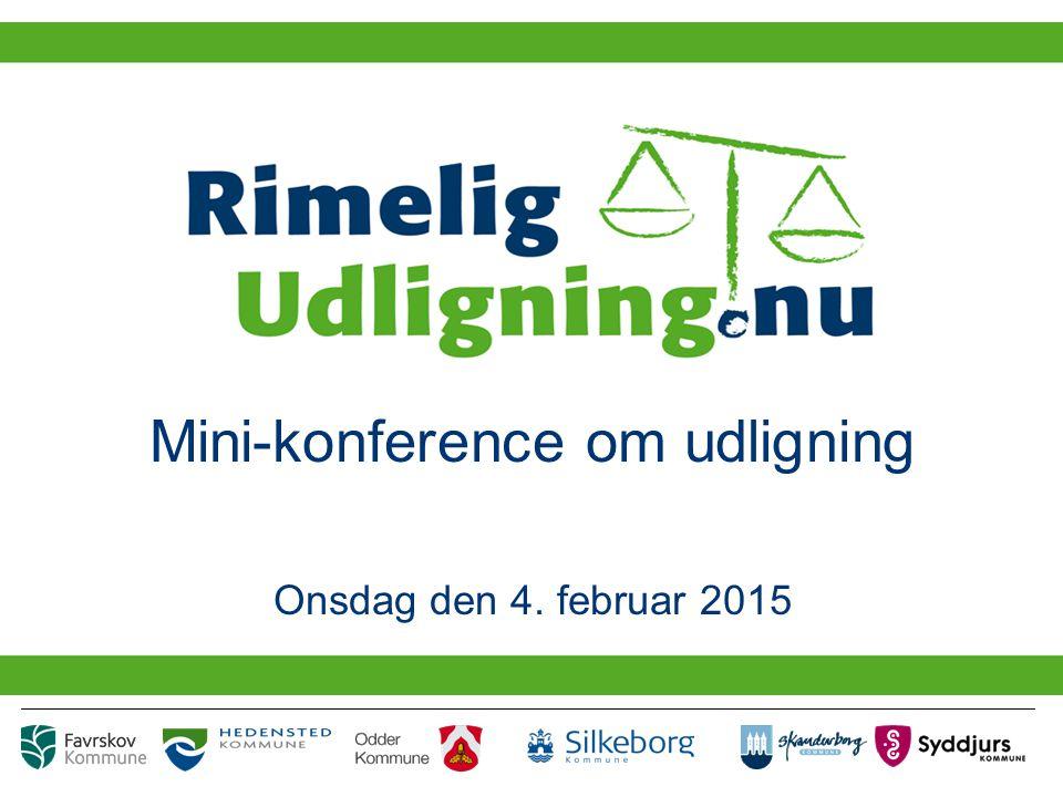 Mini-konference om udligning Onsdag den 4. februar 2015