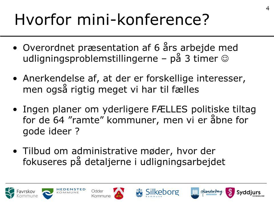 Hvorfor mini-konference.