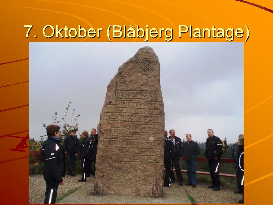 7. Oktober (Blåbjerg Plantage)