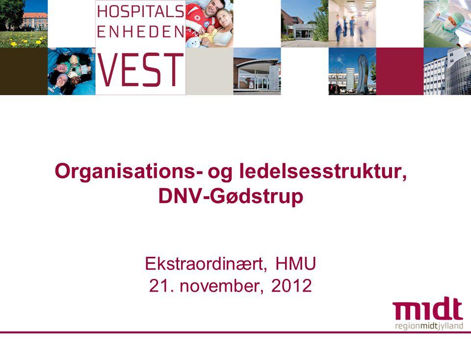 Organisations- og ledelsesstruktur, DNV-Gødstrup Ekstraordinært, HMU 21. november, 2012
