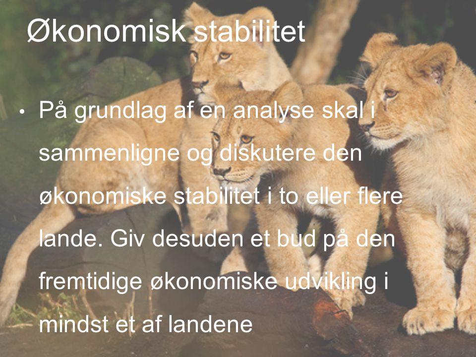 Økonomisk stabilitet På grundlag af en analyse skal i sammenligne og diskutere den økonomiske stabilitet i to eller flere lande.