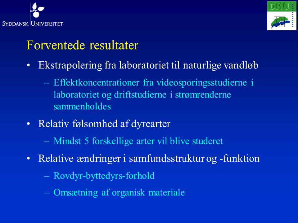 Forventede resultater Ekstrapolering fra laboratoriet til naturlige vandløb –Effektkoncentrationer fra videosporingsstudierne i laboratoriet og driftstudierne i strømrenderne sammenholdes Relativ følsomhed af dyrearter –Mindst 5 forskellige arter vil blive studeret Relative ændringer i samfundsstruktur og -funktion –Rovdyr-byttedyrs-forhold –Omsætning af organisk materiale